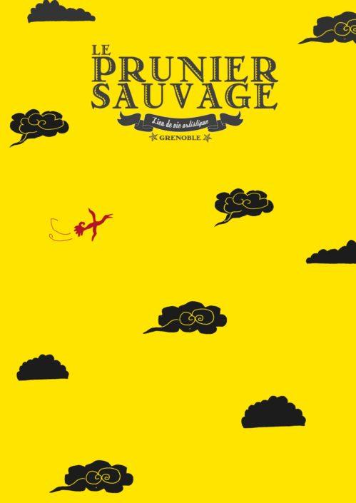 Prunier Sauvage - Janvier 2016 - Lise Iris