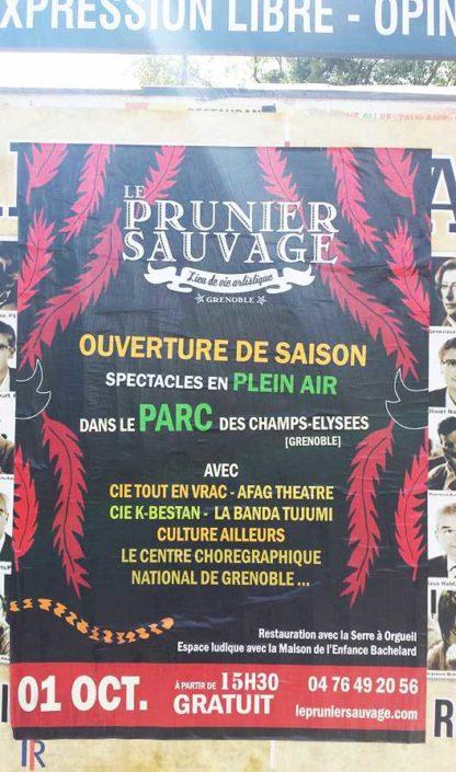 Prunier Sauvage - Octobre 2016 - Lise Iris